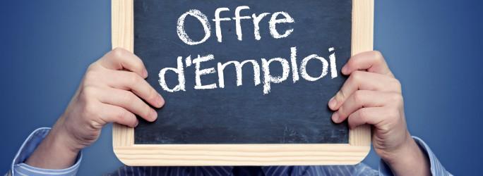Emploi-recrutement-©-N-Media-Images-Fotolia.com_-684x250